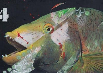 Spaanse lipvis